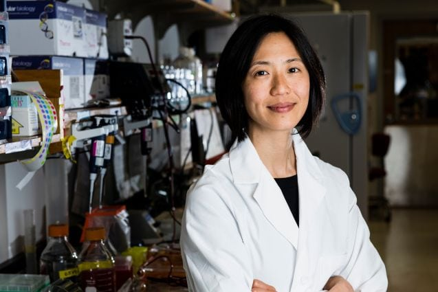 Aimee Shen of Tufts Medical School granted PATH award from Burroughs Wellcome Fund